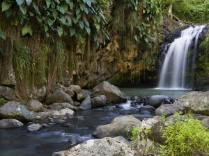 Annandale Falls, Constantine, St. George, Grenada by Holger Leue