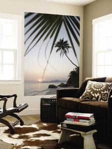 Coconut Tree Sunset Silhouette at Pte. Source D'Argent by Holger Leue
