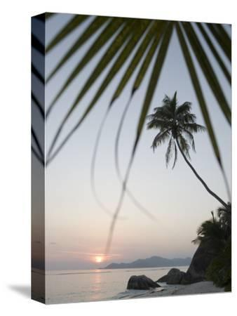Coconut Tree Sunset Silhouette at Pte. Source D'Argent