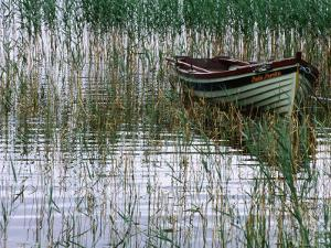 Dinghy Lady Loretta, Lough Conn, Ireland by Holger Leue