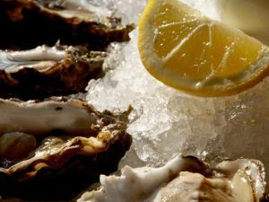 Fresh Oysters on the Half Shell at Bayswater Brasserie, Kings Cross by Holger Leue