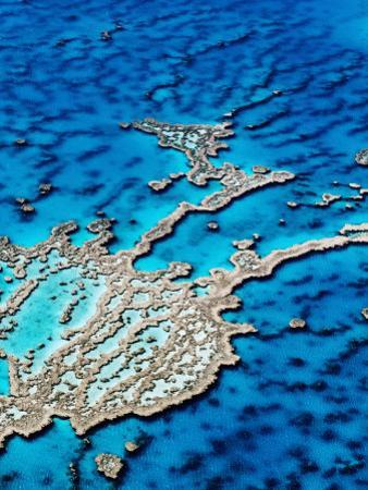 Hardy Reef, Near Whitsunday Islands, Great Barrier Reef, Queensland, Australia by Holger Leue