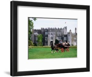 Horse Carriage with Birr Castle Demesne, Ireland by Holger Leue