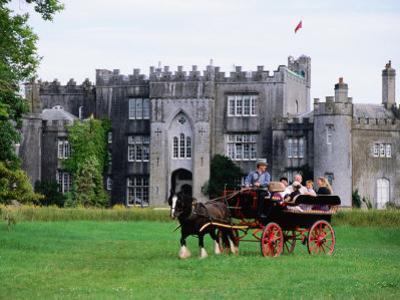 Horse Carriage with Birr Castle Demesne, Ireland