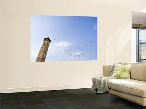 Low Angle View of Great Mosque Minaret and Flock of Birds by Holger Leue