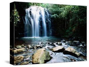 Millaa Millaa Falls, Atherton Tablelands, Queensland, Australia by Holger Leue