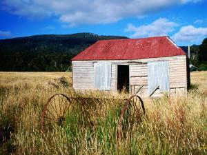 Old Shed and Farm Equipment Near Cloudy Bay by Holger Leue