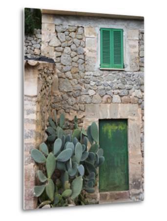 Opuntia Cactus and Green Door