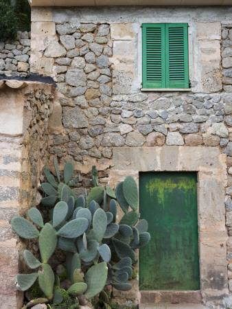 Opuntia Cactus and Green Door
