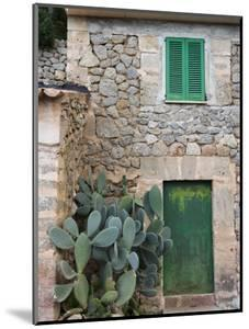 Opuntia Cactus and Green Door by Holger Leue