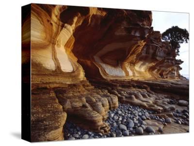 Painted Cliffs, Maria Island National Park, Maria Island, Tasmania, Australia