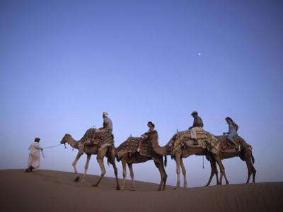 Sunset Camel Ride, Al Maha Desert Resort, Dubai, United Arab Emirates