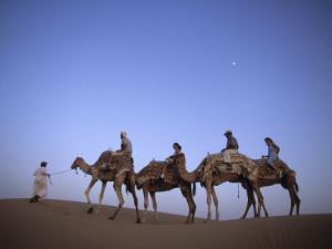Sunset Camel Ride, Al Maha Desert Resort, Dubai, United Arab Emirates by Holger Leue