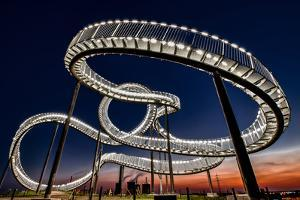 Tiger and Turtle At Dawn by Holger Schmidtke