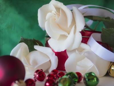 Holiday White-Bob Rouse-Photographic Print