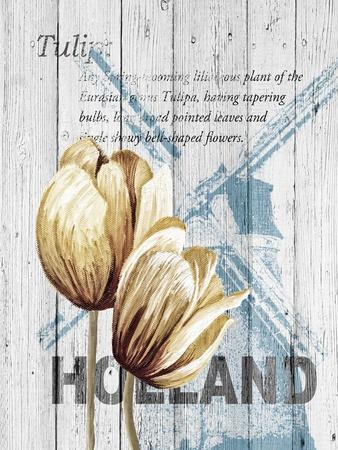 https://imgc.artprintimages.com/img/print/holland-tulips_u-l-q1b776t0.jpg?p=0