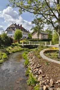 Germany, Bad Durkheim, Following the Creek by Hollice Looney