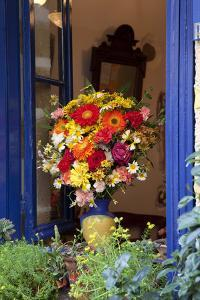 Greece, Crete, Window with flowers by Hollice Looney