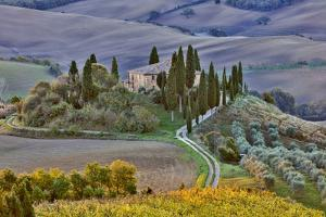 Italy, Tuscany, The Road Home by Hollice Looney
