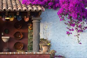 Mexico, San Miguel de Allende, Rooftop in San Miguel de Allende by Hollice Looney