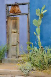 USA, Arizona, Tucson, Blue House by Hollice Looney