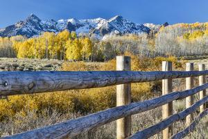 USA, Colorado, Ridgway. Fence along field of Autumn colors and Aspens in gold highlighting snowcapp by Hollice Looney