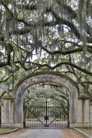 USA, Georgia, Savannah. Plantation gate at entrance