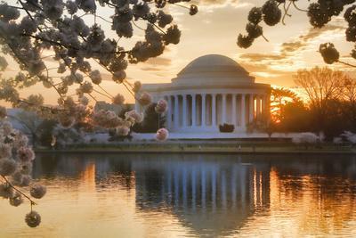 USA, Washington DC, Jefferson Memorial with Cherry Blossoms at Sunrise