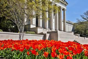 USA, Washington DC, National Gallery of Art West Building in Springtime by Hollice Looney