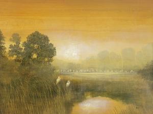 Wetlands by Holman