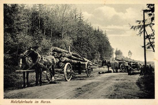 Holzfuhrleute Im Harz, Forstwirtschaft, Holzstämme, Verladen, Pferdekarren--Giclee Print