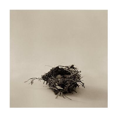 Home on a Stick-Ruth Silverman-Art Print