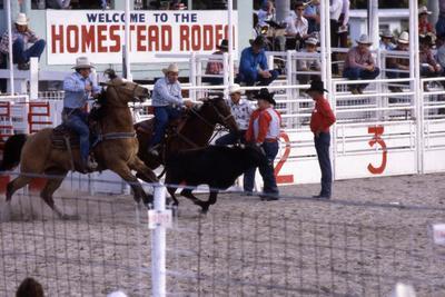 https://imgc.artprintimages.com/img/print/homestead-rodeo-c-1985_u-l-ppqt9o0.jpg?p=0