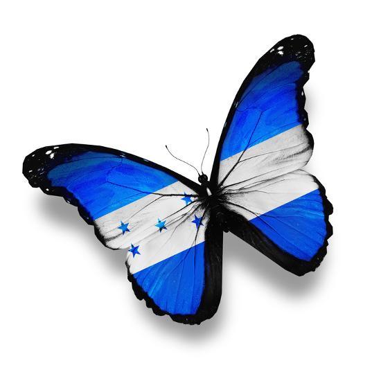 Honduras Flag Butterfly, Isolated On White-suns_luck-Art Print