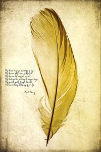 Feather in Color IV by Honey Malek
