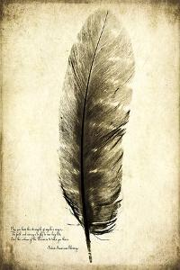 Feather on the Wind I by Honey Malek