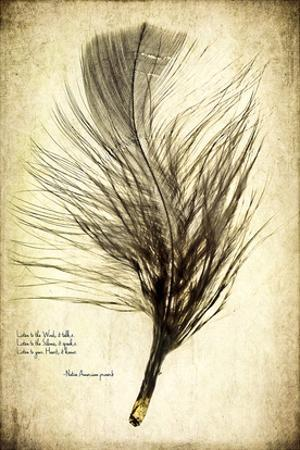 Feather on the Wind II