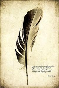 Feather on the Wind III by Honey Malek