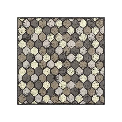 Honeycomb-Susan Clickner-Giclee Print