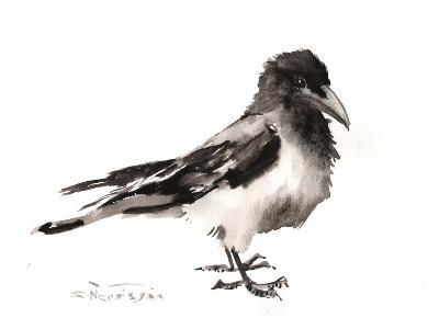 Hooded Crow-Suren Nersisyan-Art Print