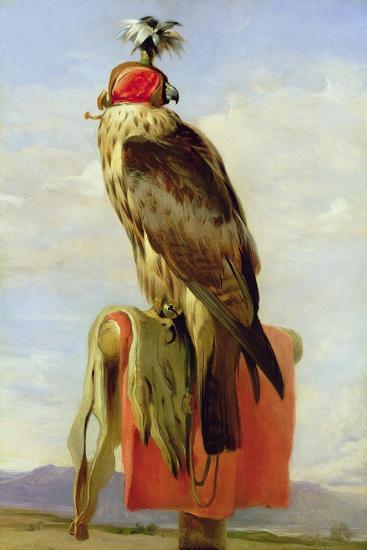 Hooded Falcon-Edwin Henry Landseer-Giclee Print