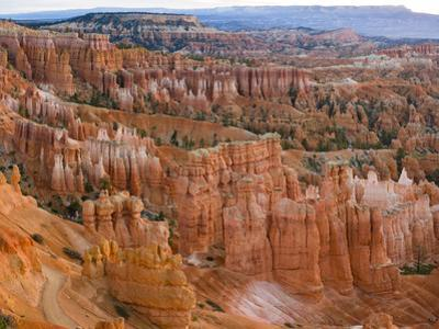 Hoodoo Rock Formations in a Canyon from Sunset Point, Bryce Canyon National Park, Utah, Usa