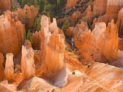 Hoodoos in Bryce Canyon from Inspiration Point, Bryce Canyon National Park, Utah, USA-Jamie & Judy Wild-Photographic Print