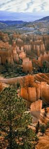 Hoodoos of Bryce Canyon in Bryce Canyon National Park, Utah, Usa