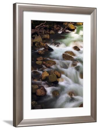 Hooksack River, Mount Baker-Snoqualmie National Forest, Washington, USA-Michel Hersen-Framed Photographic Print