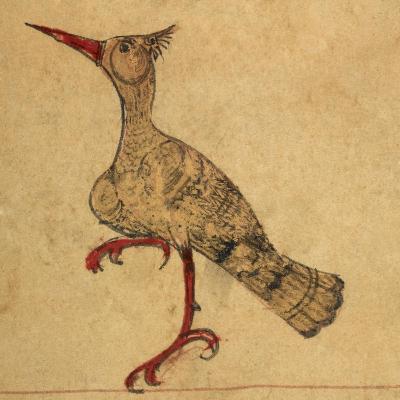 Hoopoe-Aristotle ibn Bakhtishu-Giclee Print