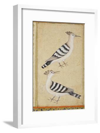 Hoopoes, C.1590
