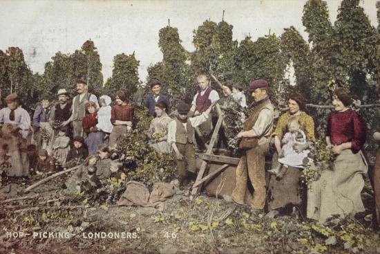 Hop Picking Londoners--Photographic Print