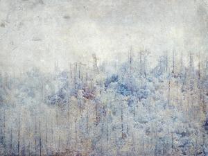 High Sierra III by Hope Bainbridge