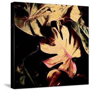 Leaves 1 by Hope Bainbridge